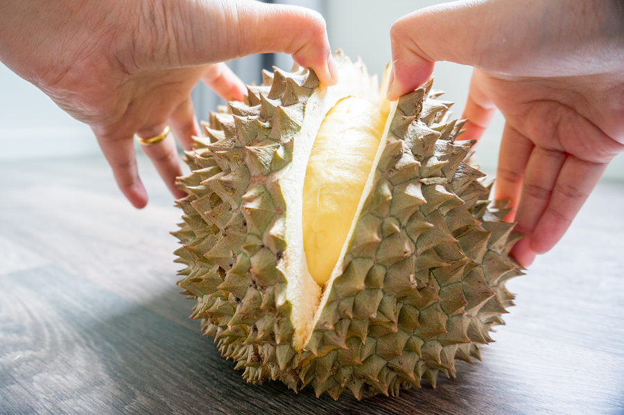woman hand is peeling a durian monthong